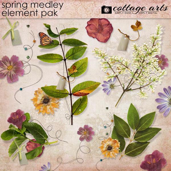 Spring Medley Element Pak Digital Art - Digital Scrapbooking Kits