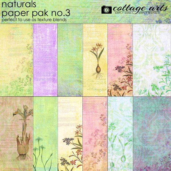Naturals 3 Paper Pak Digital Art - Digital Scrapbooking Kits