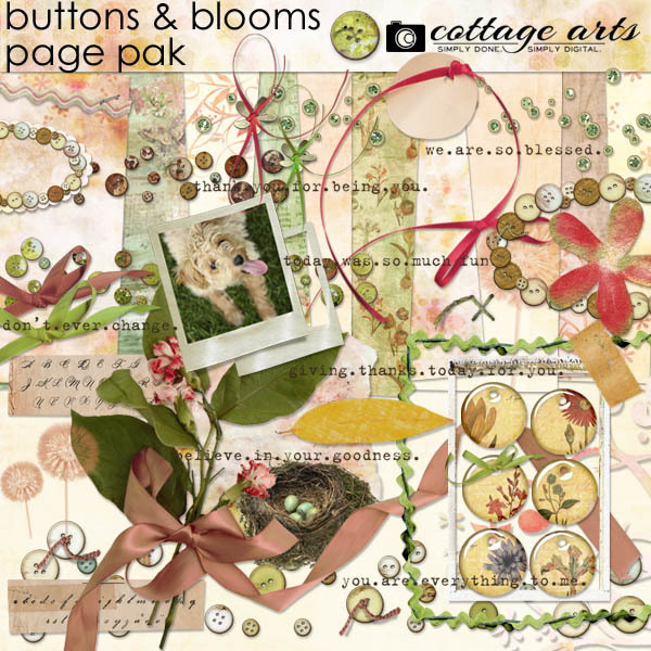 Buttons & Blooms Page Pak Digital Art - Digital Scrapbooking Kits