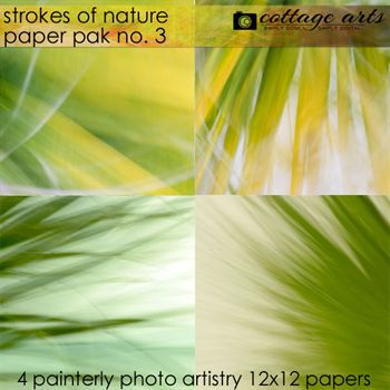 Strokes Of Nature 3 Paper Pak Digital Art - Digital Scrapbooking Kits