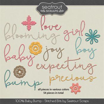 Baby Bump Stitched Words Digital Art - Digital Scrapbooking Kits