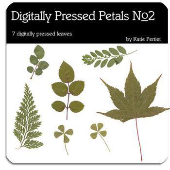 Digitally Pressed Petals No. 02 Digital Art - Digital Scrapbooking Kits
