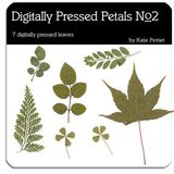 Digitally Pressed Petals No. 02