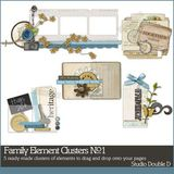Family Elements Clusters No. 01