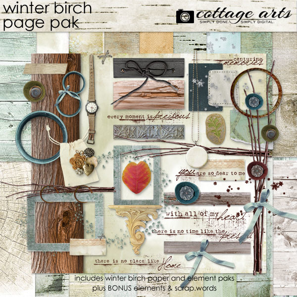 Winter Birch Page Pak Digital Art - Digital Scrapbooking Kits