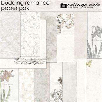 Budding Romance Paper Pak Digital Art - Digital Scrapbooking Kits