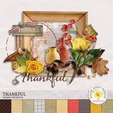 Thankful Mini Kit