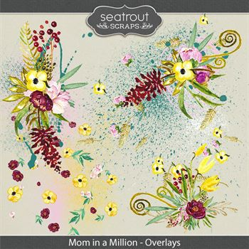Mom In A Million Overlays Digital Art - Digital Scrapbooking Kits