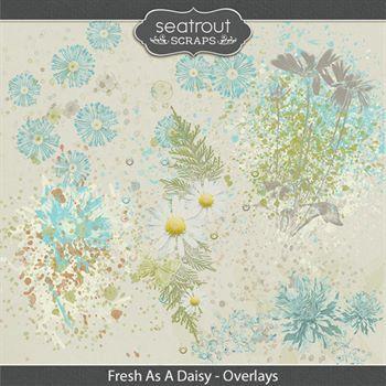 Fresh As A Daisy Overlays Digital Art - Digital Scrapbooking Kits