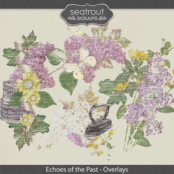 Echoes Of The Past Overlays