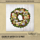 Colors Of Winter 12 X 12 Page Print