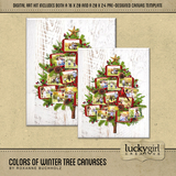 Colors Of Winter Tree Canvases