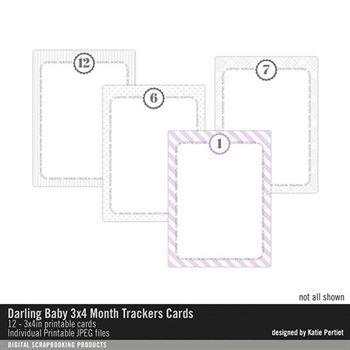 Darling Baby 3x4 Month Trackers Cards Digital Art - Digital Scrapbooking Kits