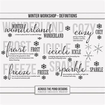 Winter Workshop - Definitions