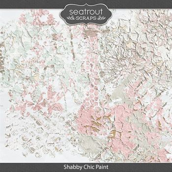 Shabby Chic Paint Digital Art - Digital Scrapbooking Kits