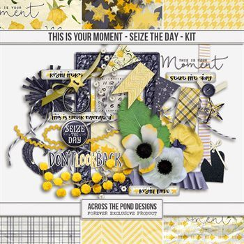 This Is Your Moment - Seize The Day - Page Kit Digital Art - Digital Scrapbooking Kits