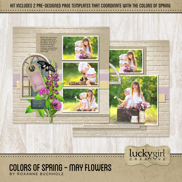 Colors Of Spring - May Flowers