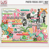 Photo Focus 2017 - May Bundle
