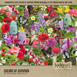 Colors Of Summer Bundle