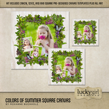 Colors Of Summer Square Canvas