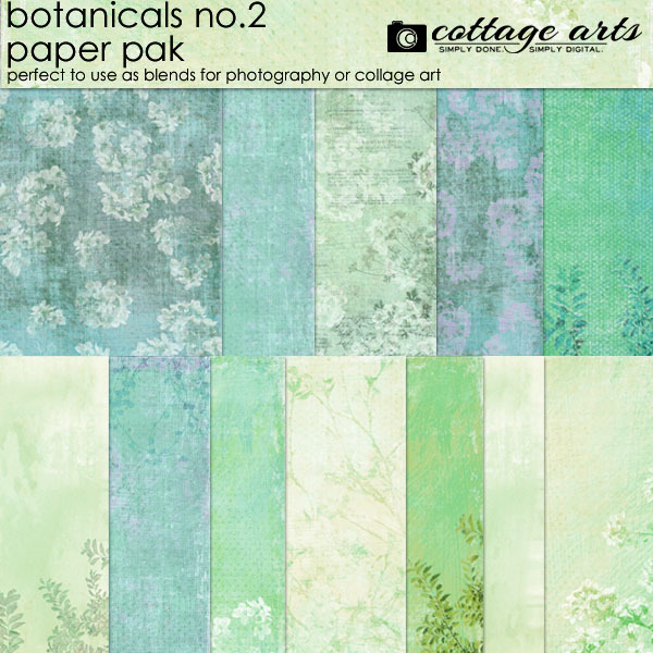 Botanicals 2 Paper Pak Digital Art - Digital Scrapbooking Kits