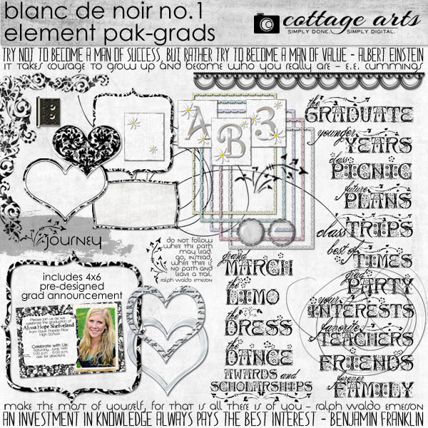 Blanc De Noir 1 Element Pak Digital Art - Digital Scrapbooking Kits