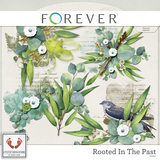 Rooted In The Past Part Two Super Mega Jumbo Bundle