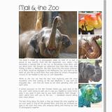 Mali Blueprint Book 12x12