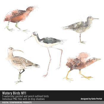 Watery Birds No. 01 Digital Art - Digital Scrapbooking Kits