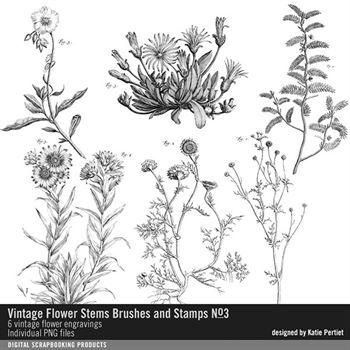 Vintage Flower Stems Brushes And Stamps No. 03 Digital Art - Digital Scrapbooking Kits