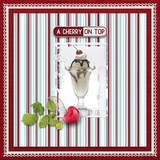 Cherry Sweet Kit