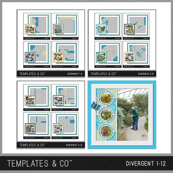 Divergent 1-12 Digital Art - Digital Scrapbooking Kits