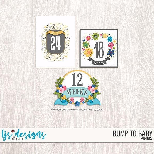 Bump To Baby Numbers Digital Art - Digital Scrapbooking Kits
