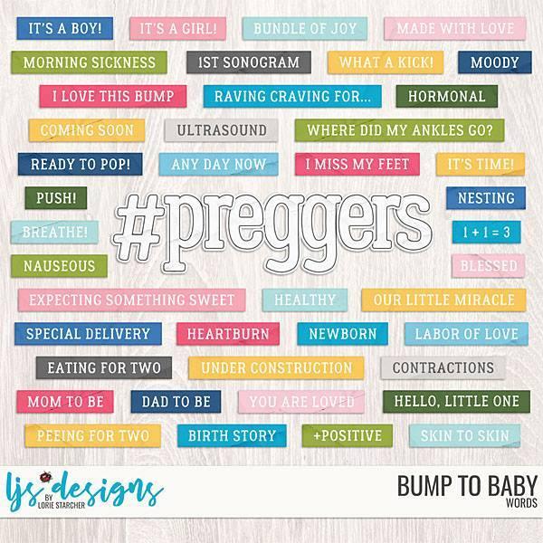Bump To Baby Words Digital Art - Digital Scrapbooking Kits