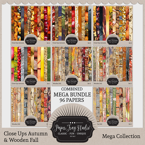 Close-ups Autumn And Wooden Fall Mega Collection