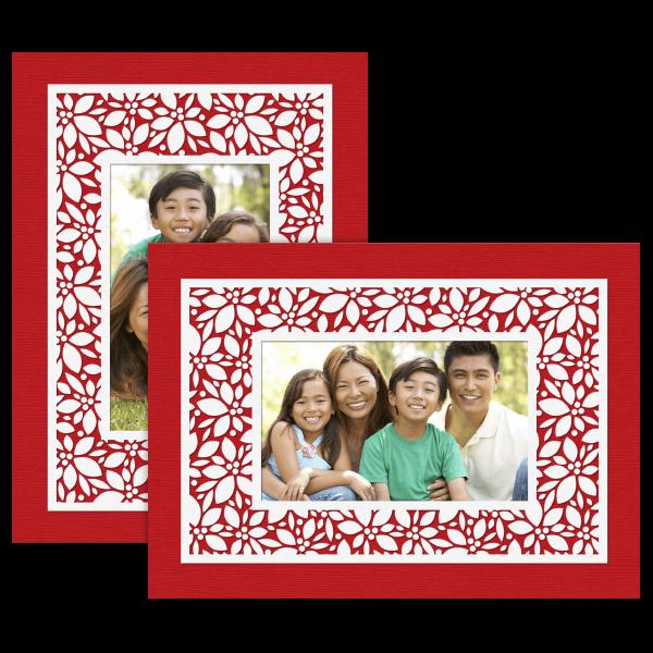 Bold Holly Card