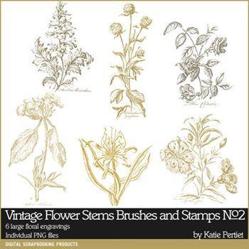 Vintage Flower Stems Brushes And Stamps No. 02 Digital Art - Digital Scrapbooking Kits