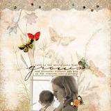 Butterfly Wings 5 Paper Pak