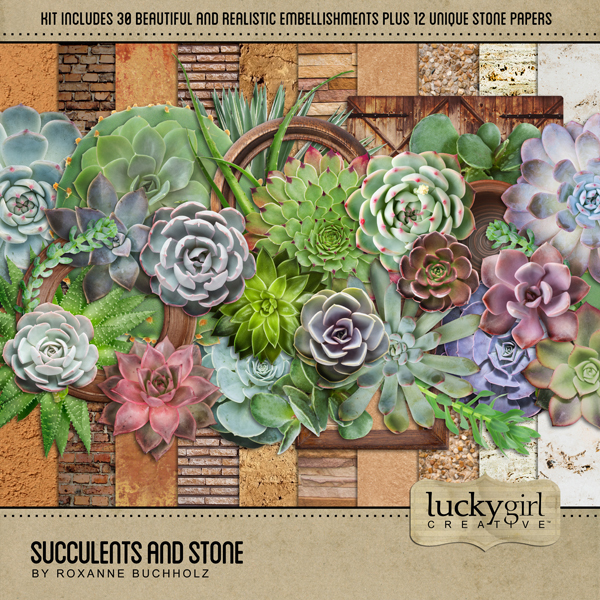 Succulents And Stone Digital Art - Digital Scrapbooking Kits