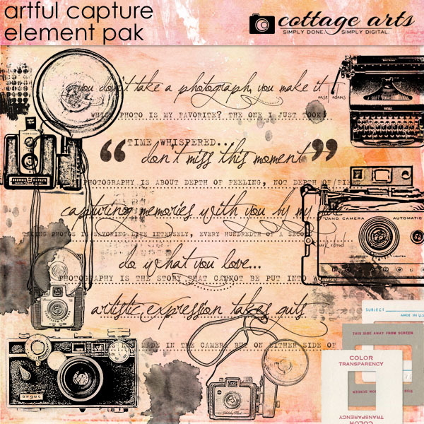 Artful Capture Element Pak Digital Art - Digital Scrapbooking Kits