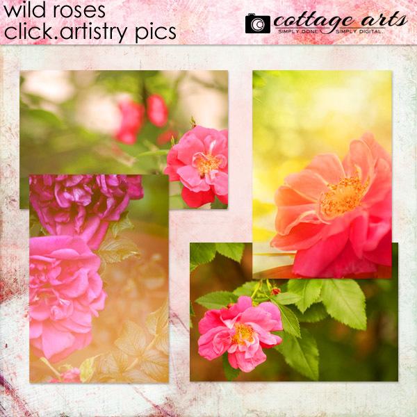 Wild Roses Click.Artistry Pics Digital Art - Digital Scrapbooking Kits