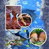 Aquarium Days Waterdrop Papers