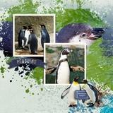 Aquarium Days Aquarium Tags