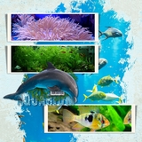 Aquarium Days Kit