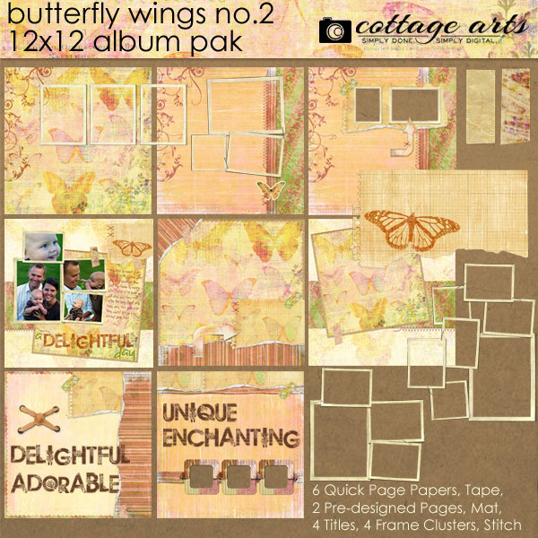 Butterfly Wings 2 12x12 Album Pak Digital Art - Digital Scrapbooking Kits