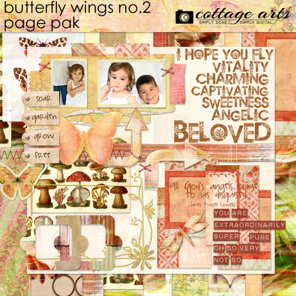 Butterfly Wings 2 Page Pak Digital Art - Digital Scrapbooking Kits