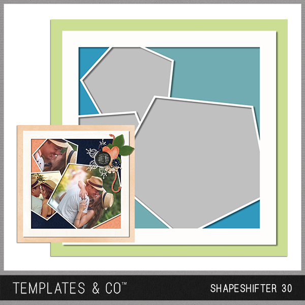 Shapeshifter 30 Digital Art - Digital Scrapbooking Kits