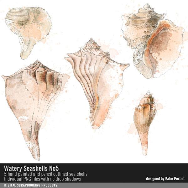 Watery Sea Shells No. 05 Digital Art - Digital Scrapbooking Kits