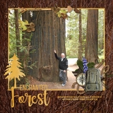 Escape to the Forest Wooden Papers