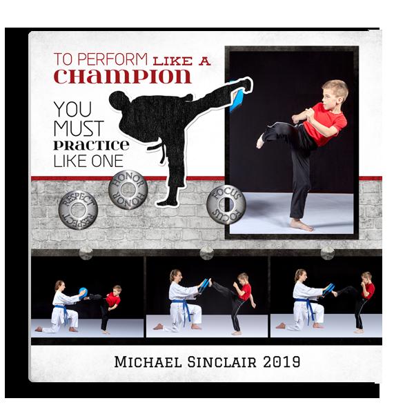Martial Arts Champion Panel Panel